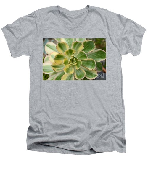Cactus 63 Men's V-Neck T-Shirt