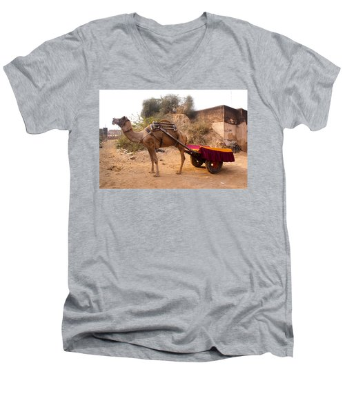 Camel Yoked To A Decorated Cart Meant For Carrying Passengers In India Men's V-Neck T-Shirt by Ashish Agarwal