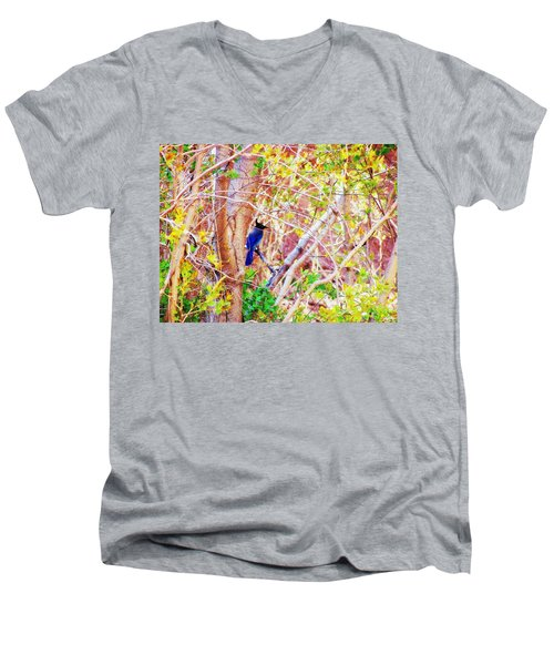 Canyon Jay  Men's V-Neck T-Shirt by Clarice  Lakota
