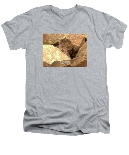 Cat On The Rocks Men's V-Neck T-Shirt