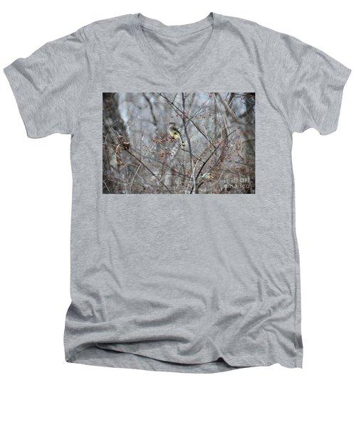 Cedar Wax Wing 3 Men's V-Neck T-Shirt by David Arment