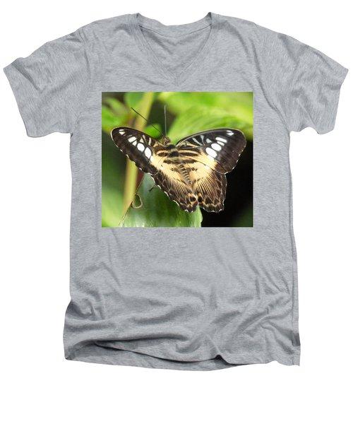 Men's V-Neck T-Shirt featuring the photograph Clipper Butterfly by Lynn Bolt