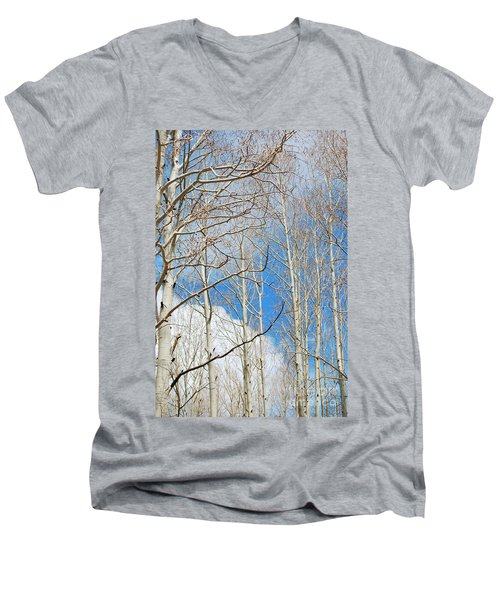 Cloudy Aspen Sky Men's V-Neck T-Shirt