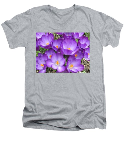 Crocus Men's V-Neck T-Shirt by Laurianna Taylor