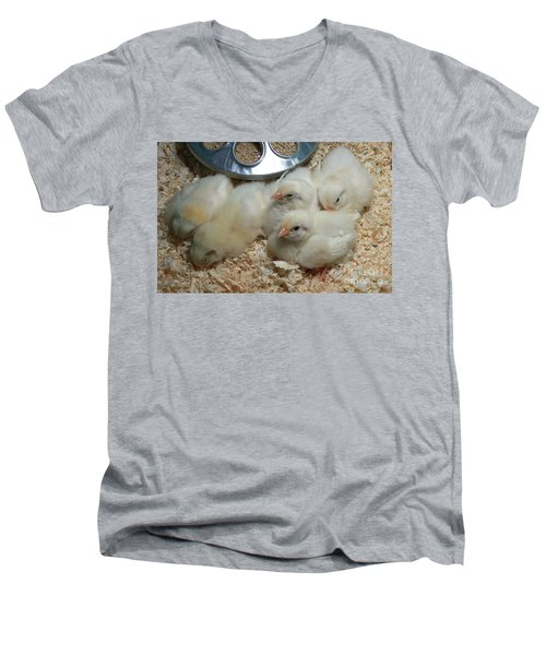 Men's V-Neck T-Shirt featuring the photograph Cute And Fuzzy Chicks by Chalet Roome-Rigdon