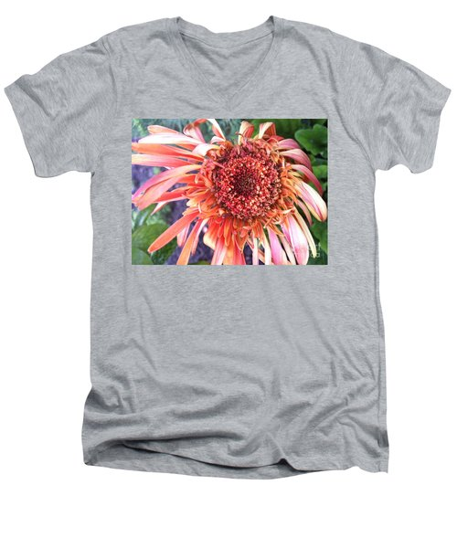 Daisy In The Wind Men's V-Neck T-Shirt