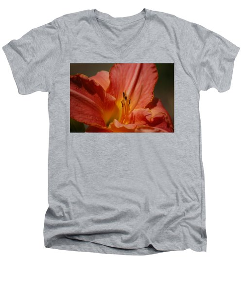 Daylilly Men's V-Neck T-Shirt