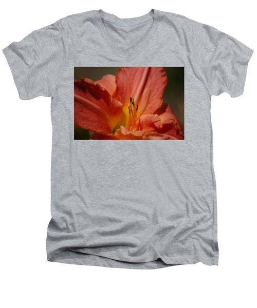 Daylilly Men's V-Neck T-Shirt by Randy J Heath