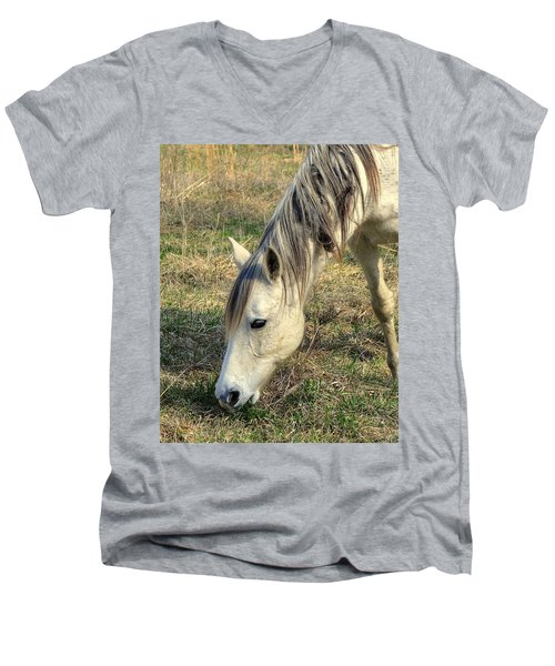 Men's V-Neck T-Shirt featuring the photograph Dinner Time by Marty Koch