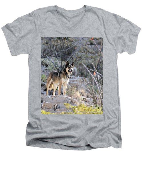 Dog In The Mountains Men's V-Neck T-Shirt by Marlo Horne