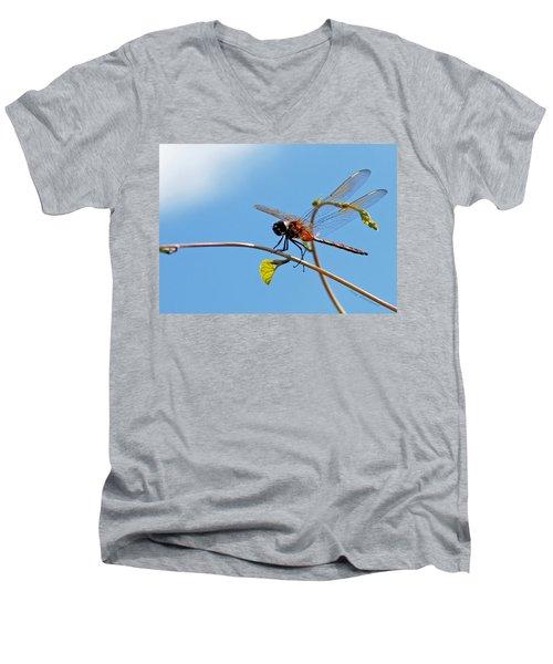Dragonfly On A Vine Men's V-Neck T-Shirt by Kay Lovingood