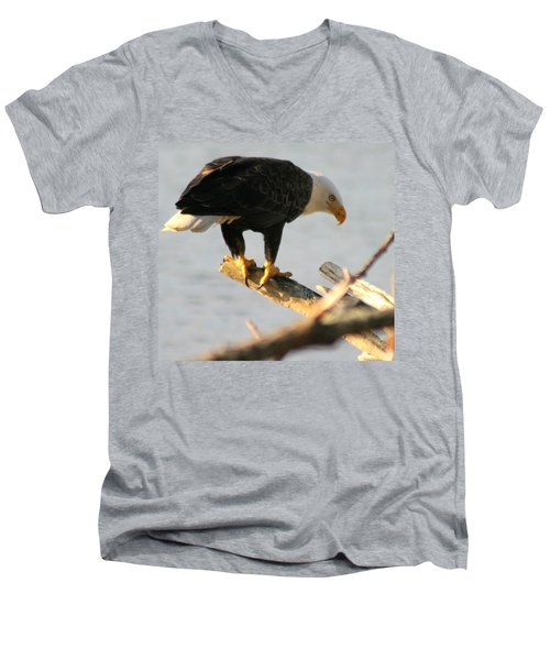 Men's V-Neck T-Shirt featuring the photograph Eagle On His Perch by Kym Backland