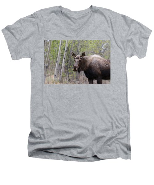 Men's V-Neck T-Shirt featuring the photograph Early Spring by Doug Lloyd