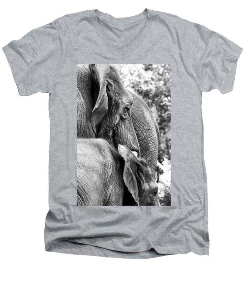 Elephant Ears Men's V-Neck T-Shirt