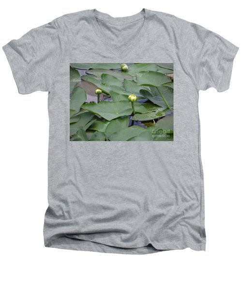 Everglade Beauty Men's V-Neck T-Shirt