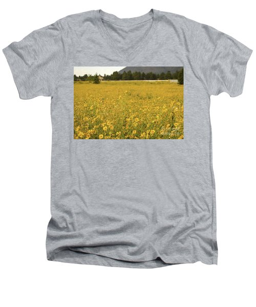 Field Of Yellow Daisy's Men's V-Neck T-Shirt