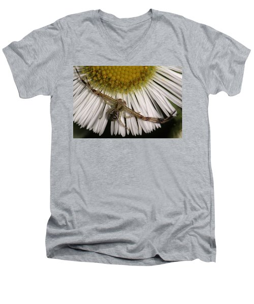 Flower Spider On Fleabane Men's V-Neck T-Shirt