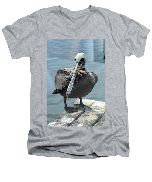 Men's V-Neck T-Shirt featuring the photograph Friendly Pelican by Carla Parris
