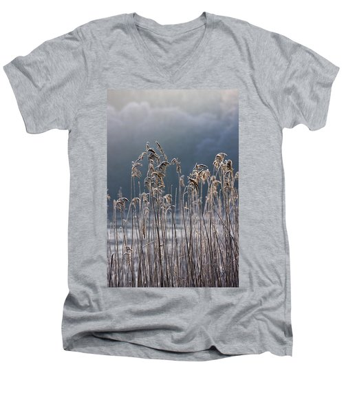 Men's V-Neck T-Shirt featuring the photograph Frozen Reeds At The Shore Of A Lake by John Short
