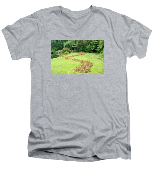 Gazebo Men's V-Neck T-Shirt