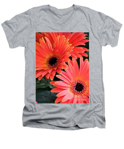 Gerbera Bliss Men's V-Neck T-Shirt by Rory Sagner