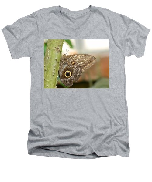 Men's V-Neck T-Shirt featuring the photograph Giant Owl Butterfly by Lynn Bolt