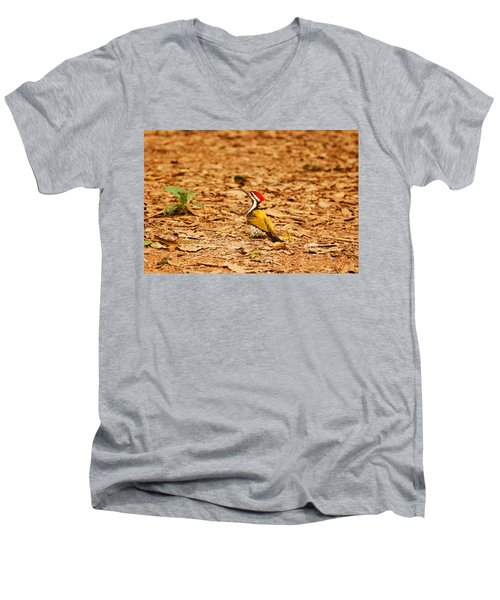 Men's V-Neck T-Shirt featuring the photograph Golden Backed Woodpecker by Fotosas Photography