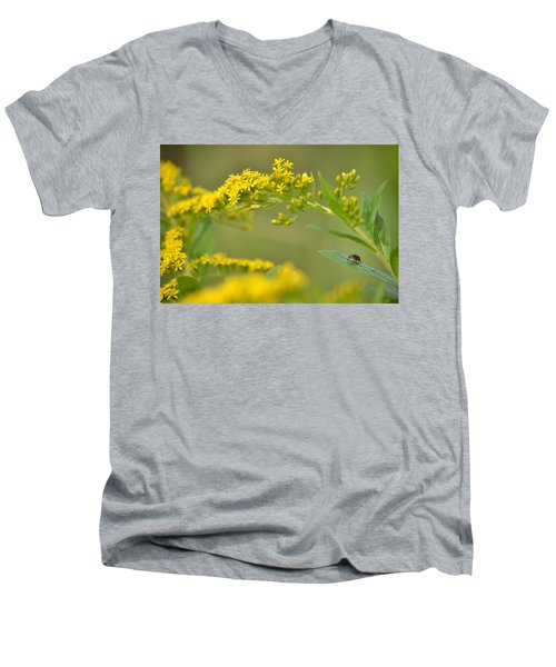 Men's V-Neck T-Shirt featuring the photograph Golden Perch by JD Grimes