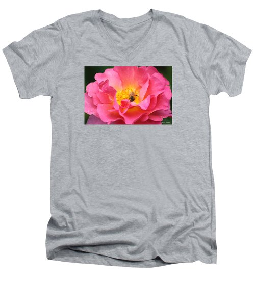 Men's V-Neck T-Shirt featuring the photograph Good Morning  by Amy Gallagher