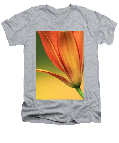 Graceful Men's V-Neck T-Shirt
