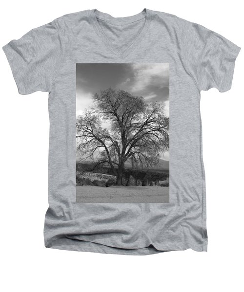 Grand Canyon Life Tree Men's V-Neck T-Shirt