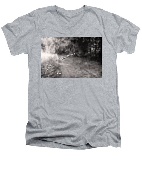 Grass Over Dirt Road Men's V-Neck T-Shirt