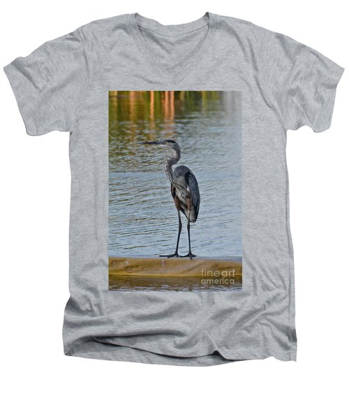 Great Blue Heron Men's V-Neck T-Shirt by Carol  Bradley