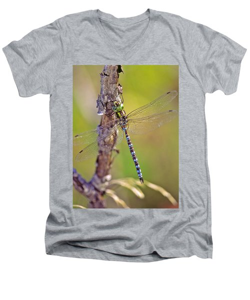 Green-striped Darner Dragonfly Men's V-Neck T-Shirt