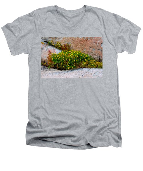Growing In The Cracks Men's V-Neck T-Shirt by Brent L Ander