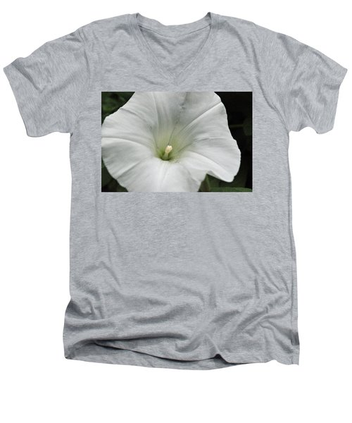 Hedge Morning Glory Men's V-Neck T-Shirt by Tikvah's Hope