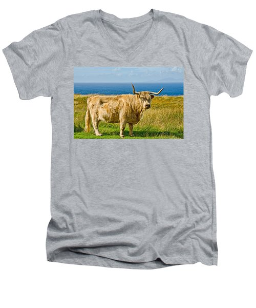 Highland Cow Men's V-Neck T-Shirt