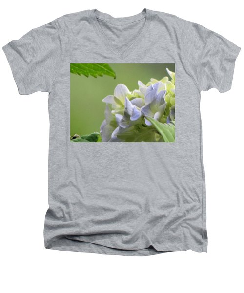 Hydrangea Blossom Men's V-Neck T-Shirt by Katie Wing Vigil