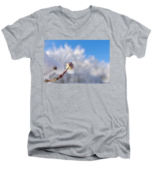 Iced Dogwood Men's V-Neck T-Shirt