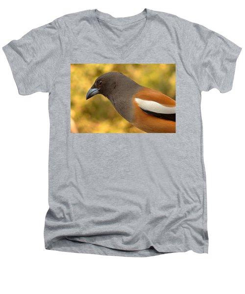 Indian Treepie. A Portrait. Men's V-Neck T-Shirt