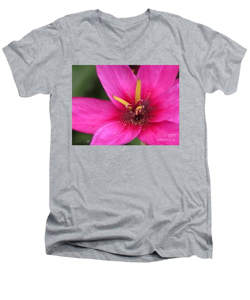 Men's V-Neck T-Shirt featuring the photograph Ixia Named Venus by J McCombie