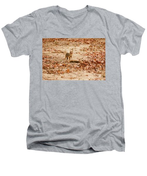 Men's V-Neck T-Shirt featuring the photograph Jackal Standing Over Deer Kill by Fotosas Photography