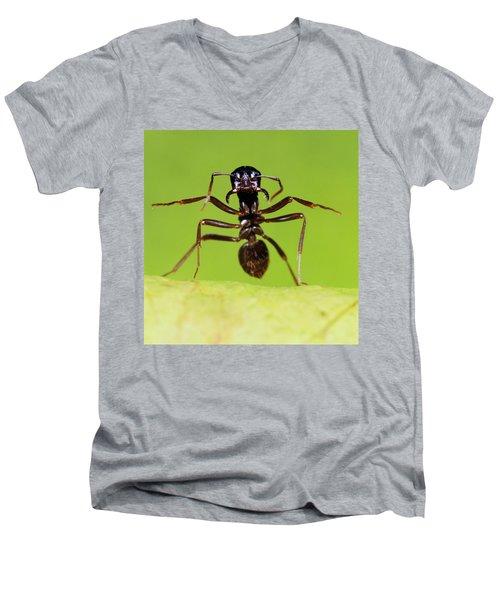 Japanese Slave-making Ant Polyergus Men's V-Neck T-Shirt