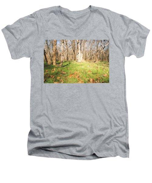 Leaves In The Fall Men's V-Neck T-Shirt