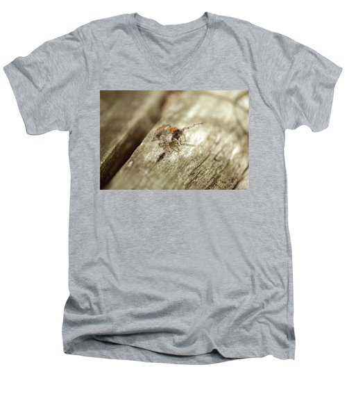Men's V-Neck T-Shirt featuring the photograph Little Jumper In Sepia by JD Grimes