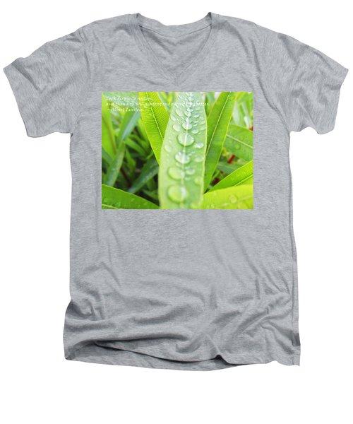 Look Deep Into Nature Men's V-Neck T-Shirt