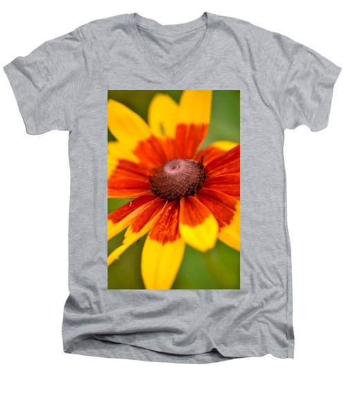 Men's V-Neck T-Shirt featuring the photograph Looking Susan In The Eye by JD Grimes
