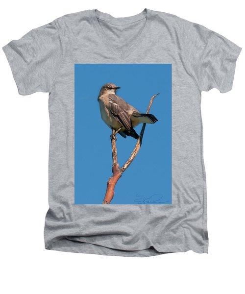 Mock One Men's V-Neck T-Shirt