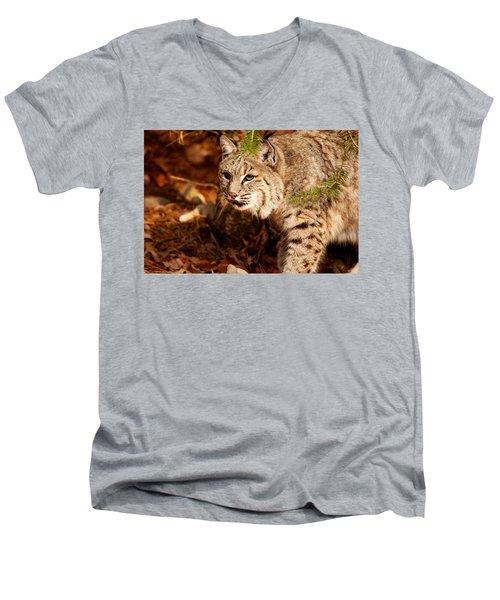Mr. Whiskers Men's V-Neck T-Shirt