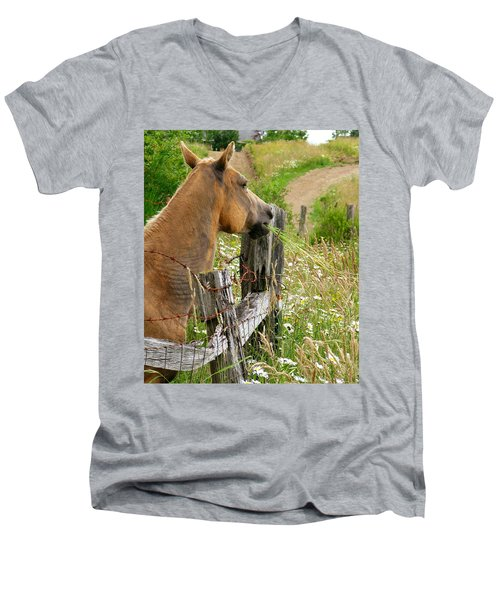 Munching On Daisies Men's V-Neck T-Shirt